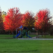Highland woods Park