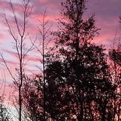 sunrise monday