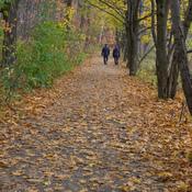 Marche dans les parcs en automne