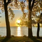 Autumn 🍂 sunset