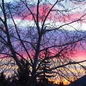 Strathcona Park sunrise Oct 27th, 2021