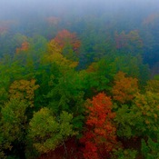 Manitoulin Colours from Above