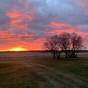 wynyard sunset