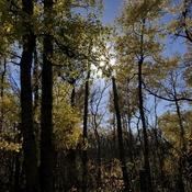 Sunday Afternoon Hike
