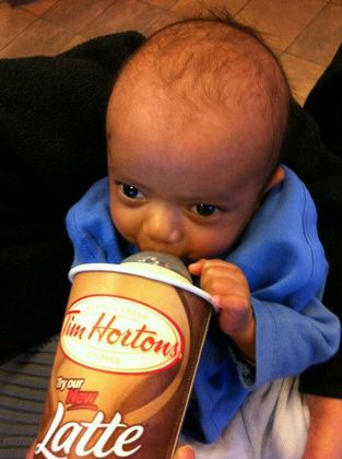 8 weeks old and already can't live without a Timmy's run.