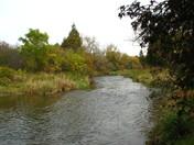 Grand River in Cambridge Ontario