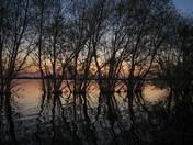 1b. Flooded Hayland