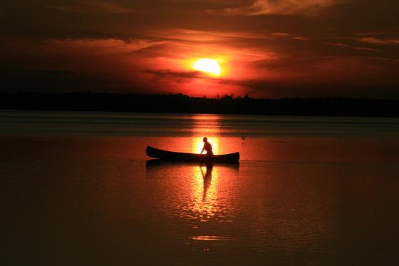Elk Island Summer Nights