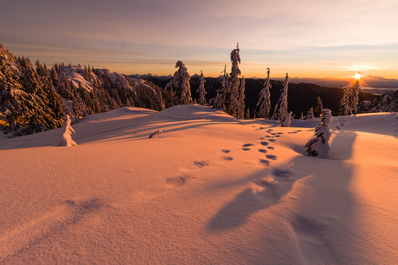 1a. Winter sunrise
