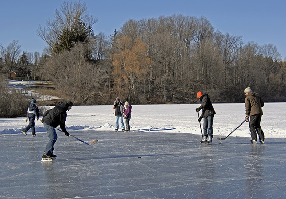 Shinny on the Pond
